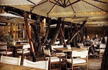 Café del Museo